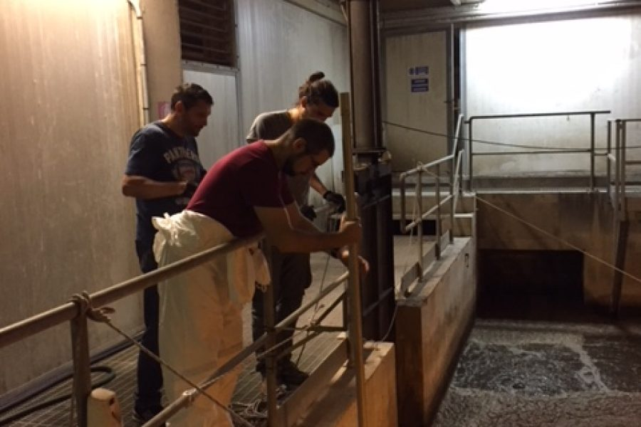 A2 – Genova Sestri P. WRRF – Monitoring campaign